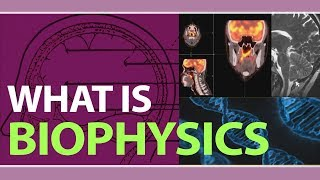 What is Biophysics ?