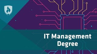 What Can You Do with an IT Management Degree? 6 Career Paths