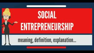 What is Social Entrepreneurship? What does it mean ?